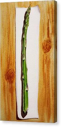 Asparagus Canvas Print - Asparagus Tasty Botanical Study by Irina Sztukowski