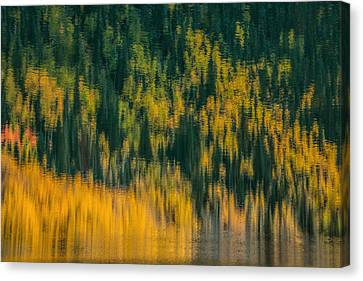 Canvas Print featuring the photograph Aspen Abstract by Ken Smith