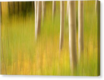 Aspen Abstract Canvas Print