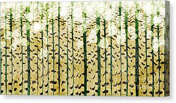 Aspen Colorado Abstract Panorama 3 Canvas Print
