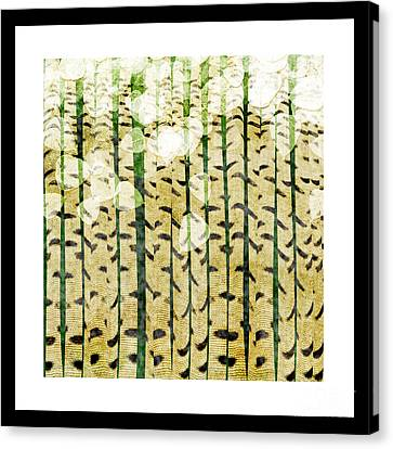 Aspen Colorado Abstract Square 3 Canvas Print by Andee Design
