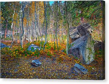 Canvas Print featuring the photograph Aspen Grove by Jim Thompson