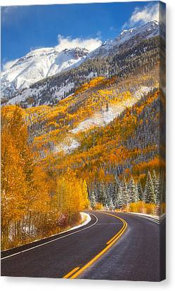 Aspen Highway Canvas Print by Darren  White