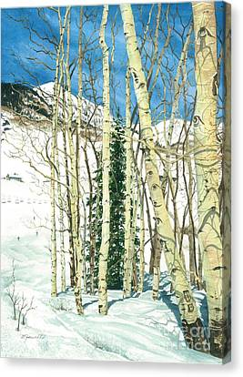 Aspen Shelter Canvas Print by Barbara Jewell
