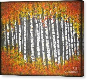 Aspen Trees Canvas Print