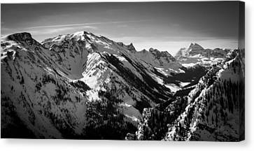 Aspen Winter Canvas Print