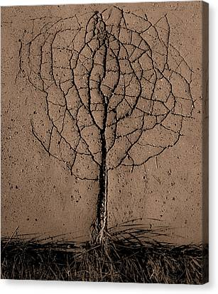 Asphalt Tree Canvas Print