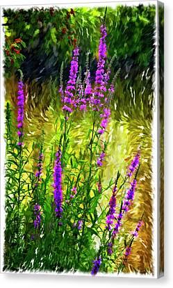 Aspirations Vignette Canvas Print by Steve Harrington