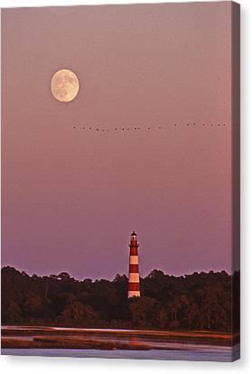 Chincoteague Canvas Print - Assateague Lighthouse Va by Skip Willits