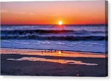 Assateague Sunrise - Ocean - Virginia Canvas Print by SharaLee Art