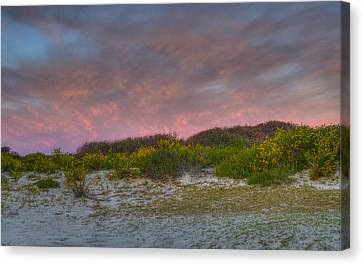 Asseteague Island Dune Sunrise Canvas Print