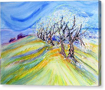 Francis Canvas Print - Assisi Wind by Sarah Hornsby