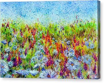 Aster Season Canvas Print