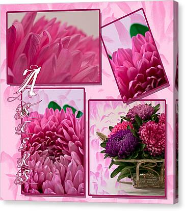 Asters Photo Collage Canvas Print by Sandra Foster