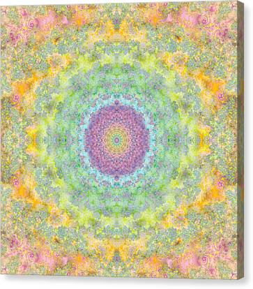Astral Field Canvas Print