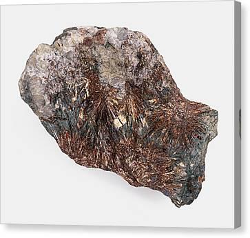 Astrophyllite Canvas Print