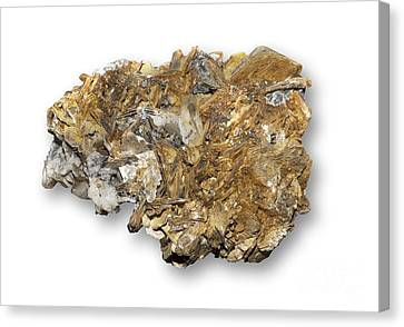 Titanium White Canvas Print - Astrophyllite Mineral by Dirk Wiersma