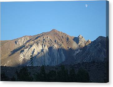 At Convict Lake Campground Canvas Print