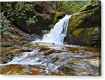 At Dodd Creek Canvas Print by Susan Leggett