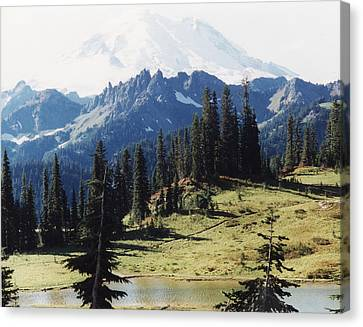 At Mt. Rainiers Feet Canvas Print by Myrna Walsh