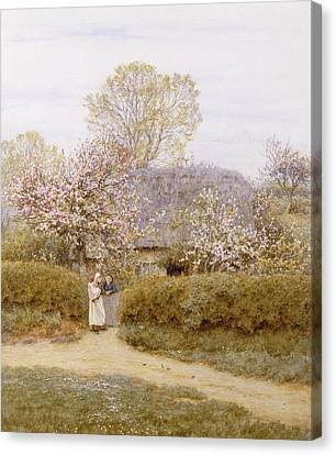 At School Green Isle Of Wight Canvas Print
