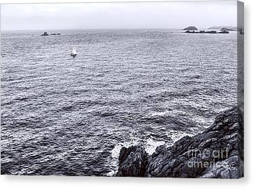 At Sea Canvas Print by Olivier Le Queinec