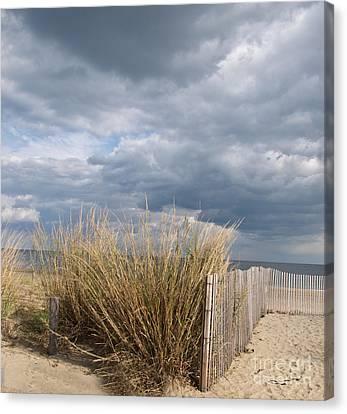 At The Beach Canvas Print by Arlene Carmel