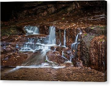 At The Bottom Of Honey Run Canvas Print
