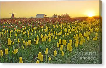 Canvas Print featuring the photograph At The Crack Of Dawn by Nick  Boren