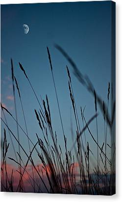 At The Fall Of Night Canvas Print by K Hines