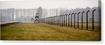 At The Fence Canvas Print by Jen Morrison