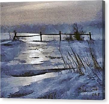 At The Frozen Lake Canvas Print by Dragica  Micki Fortuna