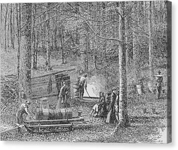 At The Maple Syrup Camp Canvas Print by American School
