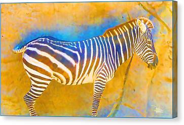 At The Zoo - Zebras Canvas Print by Douglas MooreZart