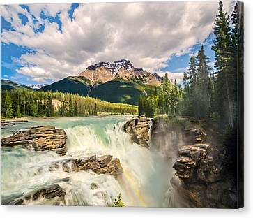 Tracy Munson Canvas Print - Athabasca Falls by Tracy Munson