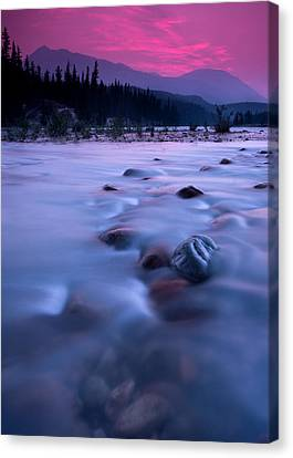 Athabasca Sunset Canvas Print by Cale Best