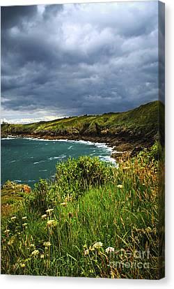 Atlantic Coast In Brittany Canvas Print by Elena Elisseeva