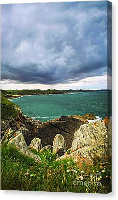 Atlantic Coastline In Brittany Canvas Print by Elena Elisseeva