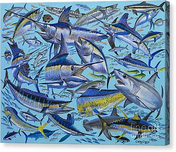 Atlantic Gamefish Off008 Canvas Print by Carey Chen