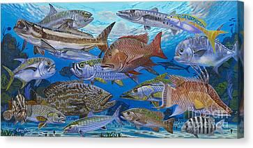 Pompano Canvas Print - Atlantic Inshore Species In0013 by Carey Chen
