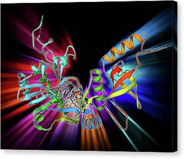 Atp-dependent Dna Ligase Molecule Canvas Print by Laguna Design