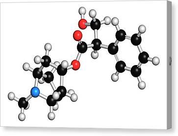 Atropine Alkaloid Molecule Canvas Print