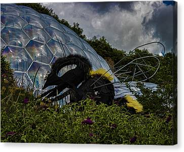 Attack Of The Giant Wasp Canvas Print by Martin Newman