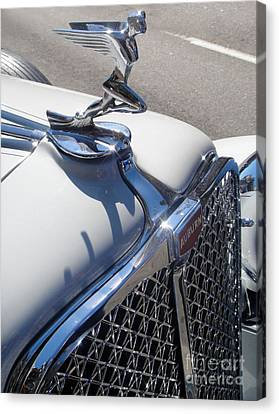 Auburn Hood Ornament Canvas Print by Gregory Dyer