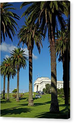 Auckland Canvas Print - Auckland War Memorial Museum, Auckland by David Wall