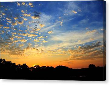 August East Texas Morning Canvas Print by Lorri Crossno