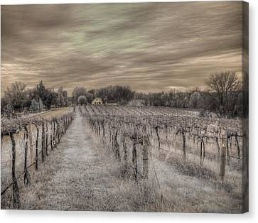 Augusta Missouri Winery Canvas Print by Jane Linders