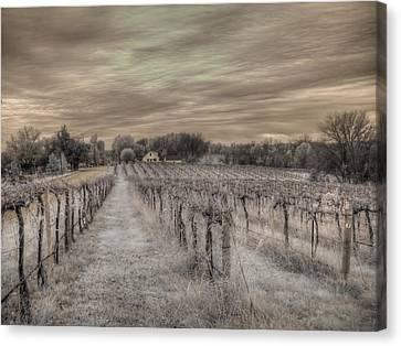 Augusta Missouri Winery Canvas Print