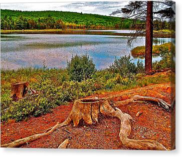 Aunt Betty Pond In Acadia National Park-maine  Canvas Print by Ruth Hager