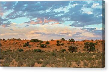 Auob Riverbed With Clouds At Dusk Canvas Print by Tony Camacho